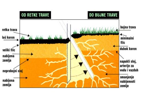 Održavanje terena - grafički prikaz oporavka trave