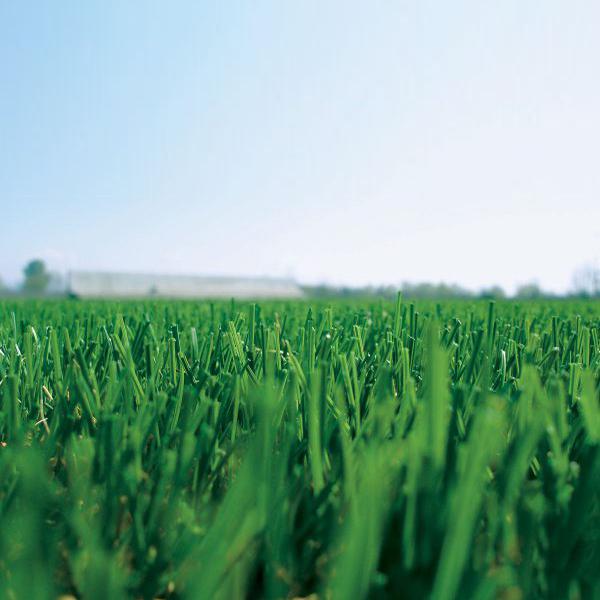 Veštačka trava na fudbalskom terenu