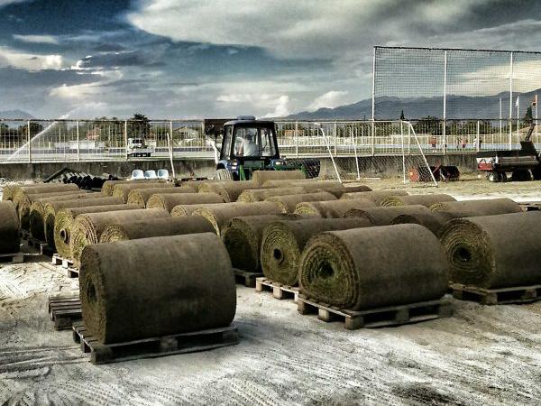 Prirodna busen trava u rolnama pre postvljanja